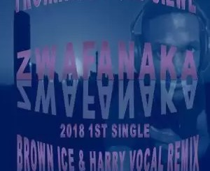TROIKA MUSIQ FT SIZWE – ZWAFANAKA (BROWN ICE & HARRY REMIX)