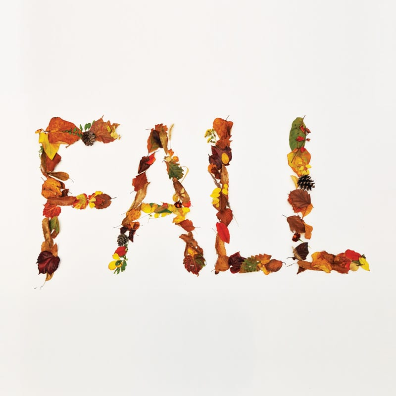 Crucial Star - Fall album cover