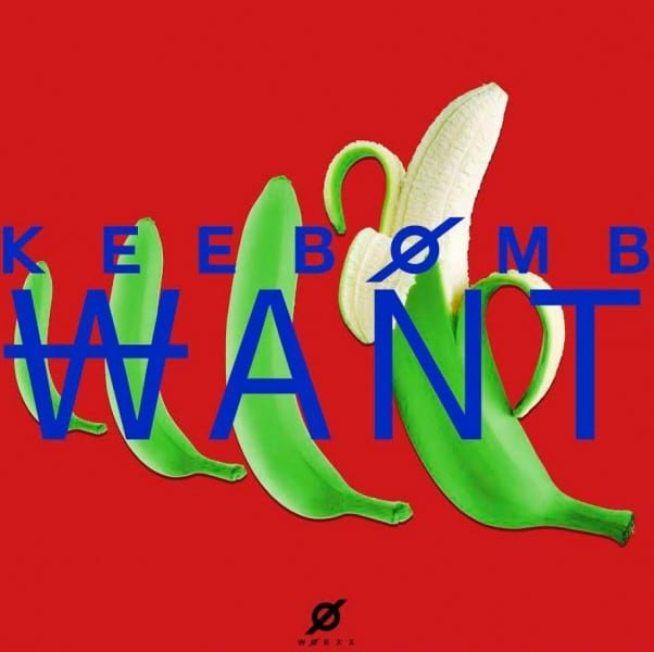 KeeBomb - WANT (cover)