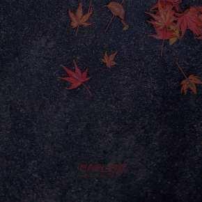 Denzel O'Mighty, Karacin Jr. - Maple10 (album cover)