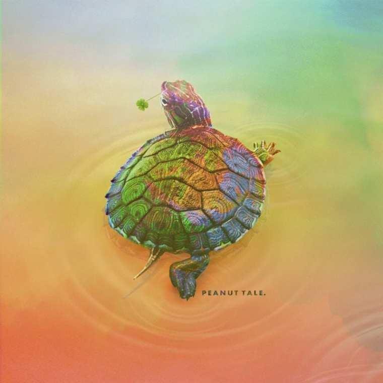 SigMA - Peanut Tale (album cover)