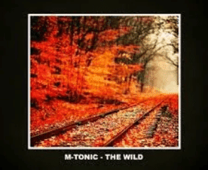 M Tonic The Wild Original Mix Hiphopza - M-Tonic – The Wild (Original Mix)