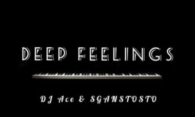 Deep feelings - DJ Ace & Sgantsotso – Deep Feelings