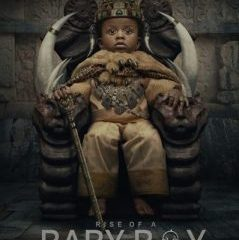 Vigro Deep – Rise Of A Baby Boy Album Art Zablast.Com  3 239x300 Hip Hop More - Vigro Deep ft MhawKeys – Phumelela (Covid 19)
