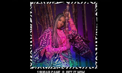 Tiwa savage sugarcane ep artwork Hip Hop More 2 - Tiwa Savage – Me & You