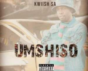 Kwiish SA – Umshiso mp3 download zamusic Hip Hop More 3 - Kwiish SA – NGimThanda ft. MalumNator & Sihle