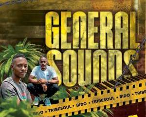 Tribesoul Bido Vega – General Sounds mp3 download zamusic Hip Hop More 4 - Tribesoul & Bido Vega – General Sounds (Main Mix)