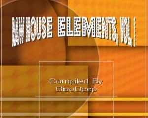 BisoDeep – Raw House Elements Vol. 1 mp3 download zamusic Hip Hop More 8 - Mlt-Deep – Welcome Home (Tribute To Namasters)