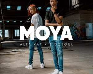 Alfa Kat TidoSoul – Falling Ft. Leandra Vert mp3 download zamusic Hip Hop More 2 - Alfa Kat & TidoSoul – Asambeni Ft. Costa Titch, NELCNO & Clumsy