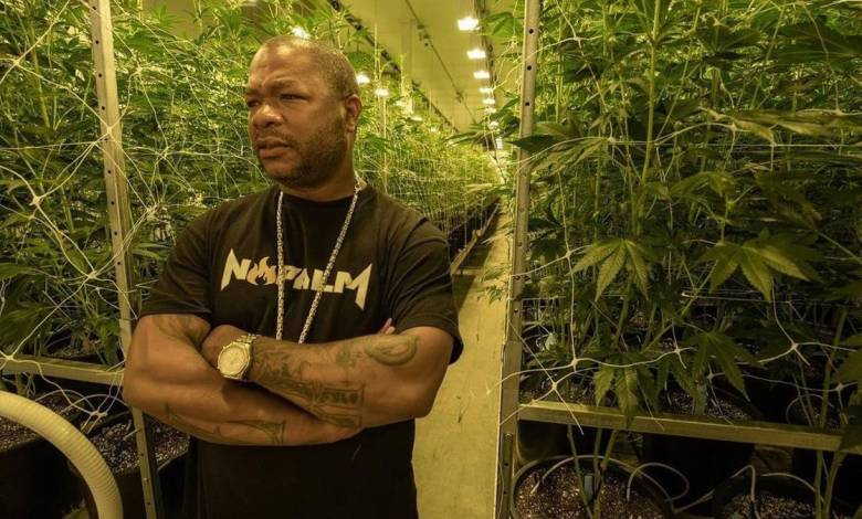 """Xzibit Aims For Unification With New Single """"One Nation"""""""