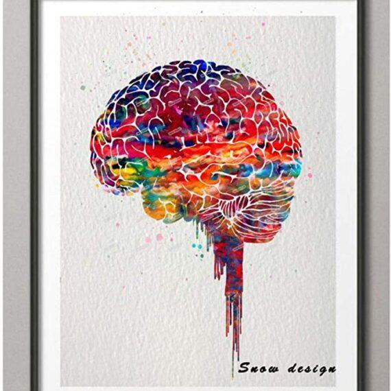 cuadro cerebro