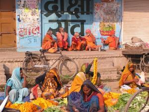 15 redenen om af te reizen naar India