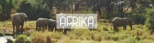 Afrika header