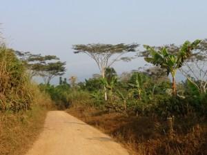 Afrikaanse landschappen