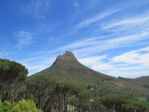 Lionshead Kaapstad