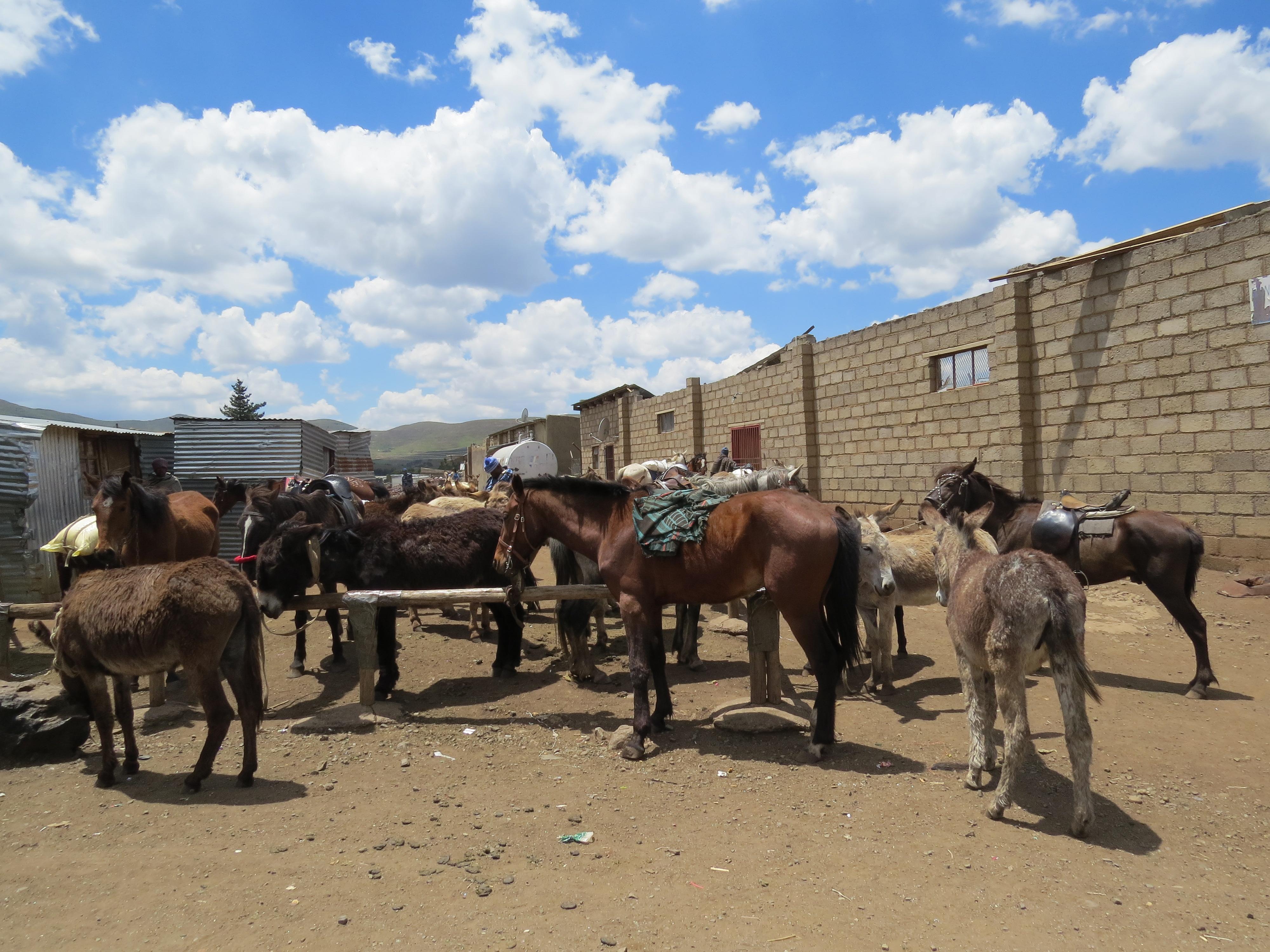 Parkeerplaats markt Lesotho