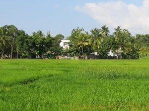 Thisara Guesthouse Polonnaruwa Sri Lanka