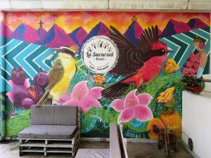 Onze mooiste hostels in Colombia