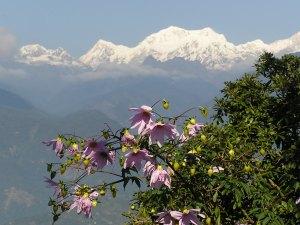Himalaya in Sikkim India