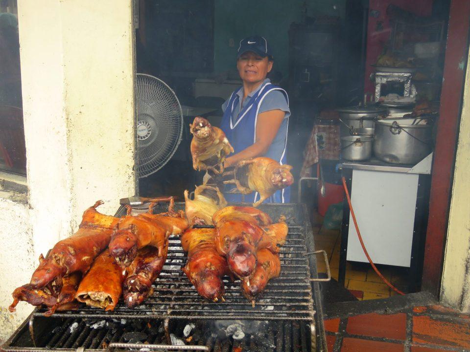 Cavia eten in Ecuador