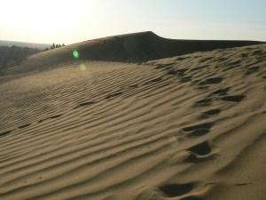 Woestijn bij Jaisalmer India