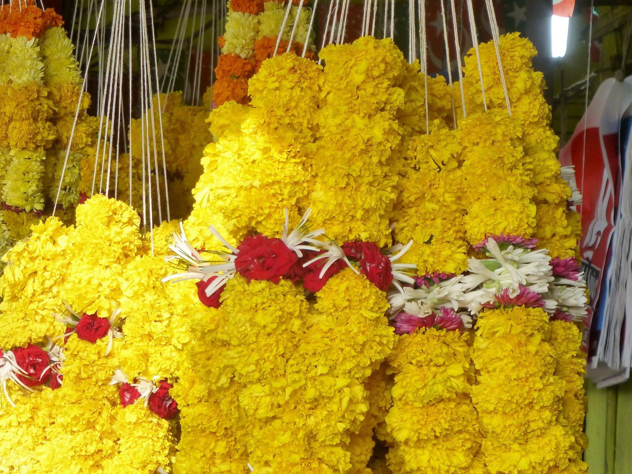 bloemenketting offer India