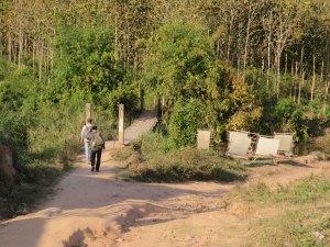 Bamboe papier Nam Ha NP Laos