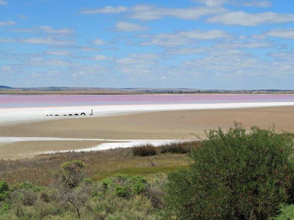 Zoutmeer ten noorden van Adelaide Australië