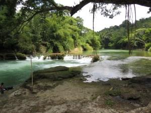 natuur Bohol Filipijnen