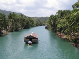 Natuur op Bohol Filipijnen