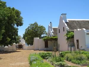 Babylonstoren wijngaard Zuid-Afrika