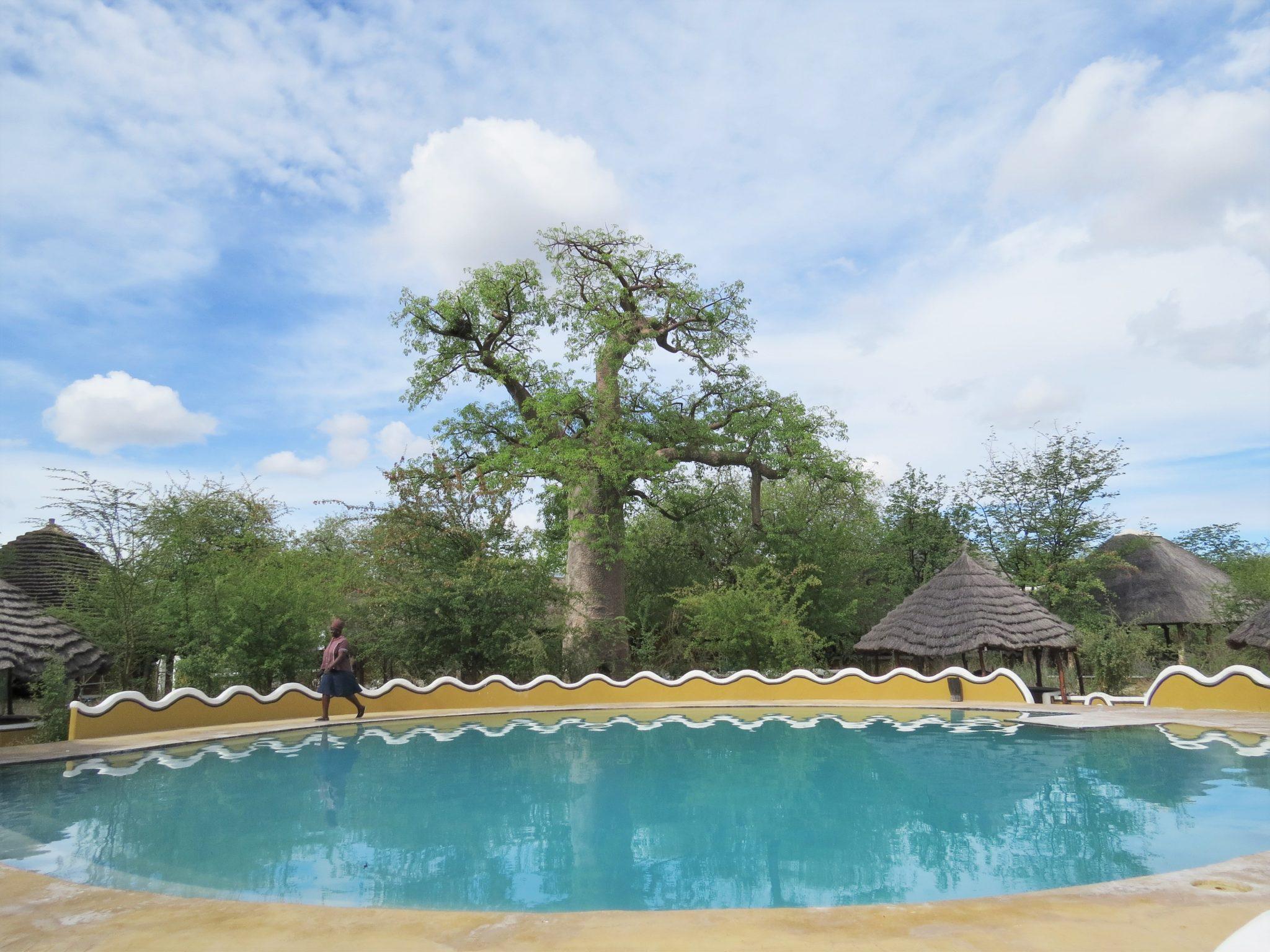 Onze mooiste campings in Botswana