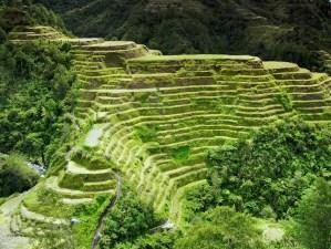 rijstvelden Banaue Filipijnen