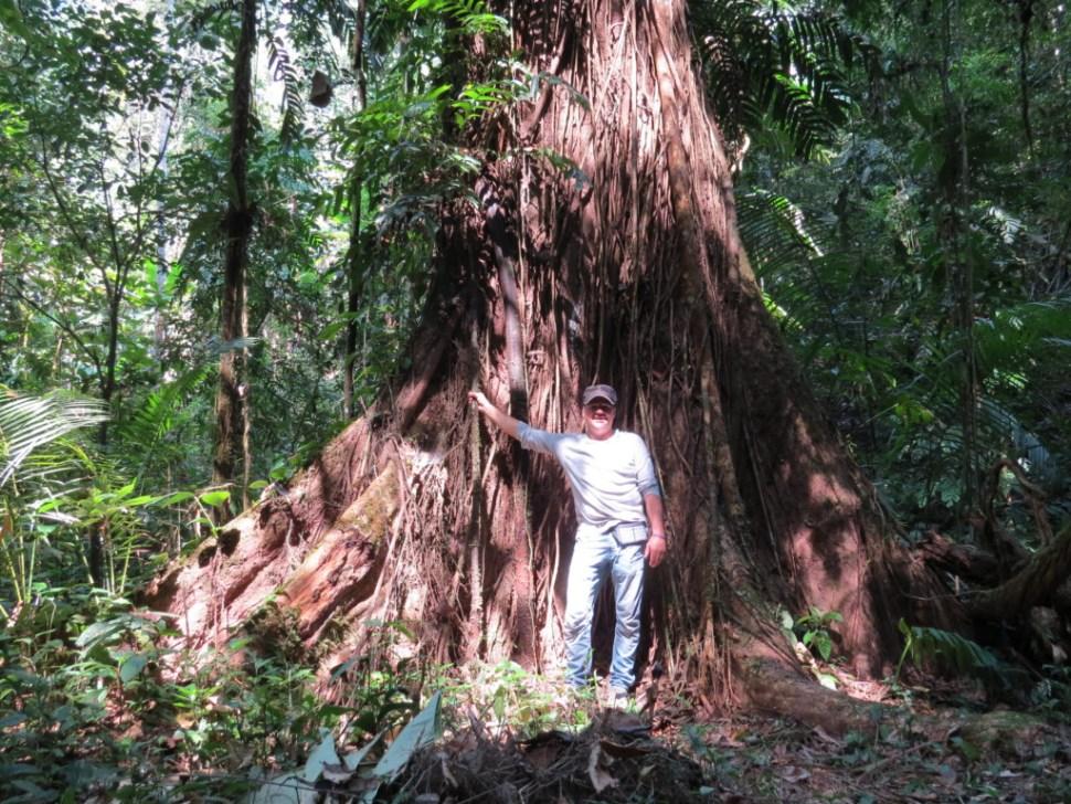 Nam Ha NP in Laos