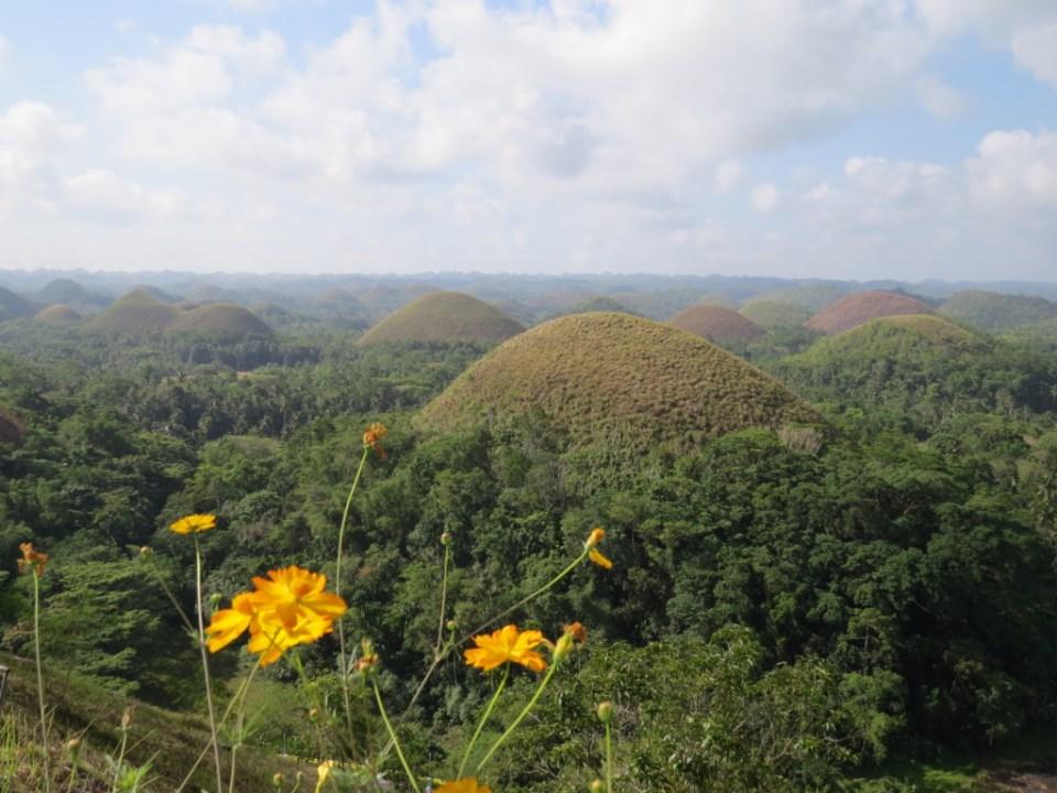 Chocolate-Hills-op-Bohol-eiland-Filipijnen