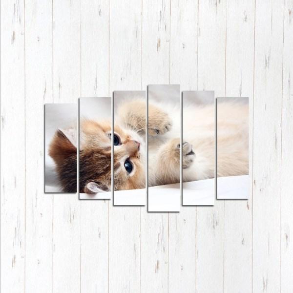 Модульная картина Очаровательный котёнок
