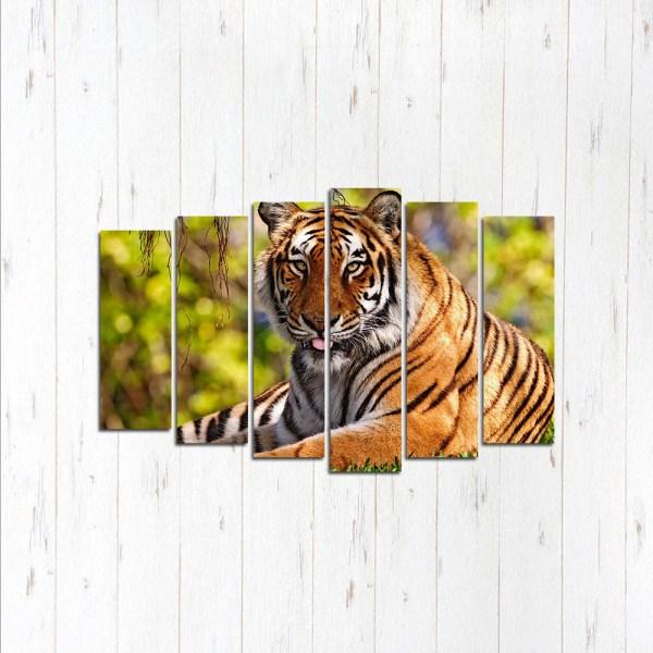 Модульная картина Гордый тигр