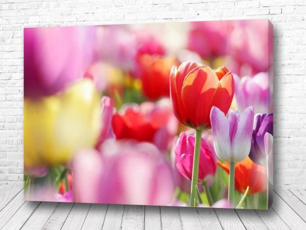 Постер Поляна лилий