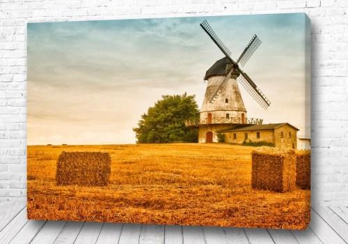 Постер Мельница в поле