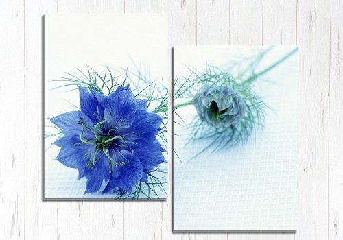 Модульная картина Синий цветок