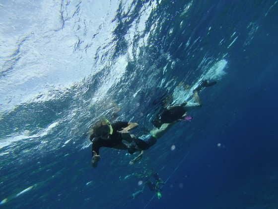 activities to do in maui hawaii