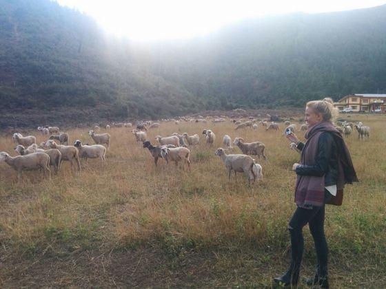 Places to Visit in Bomdila18, sangti valley