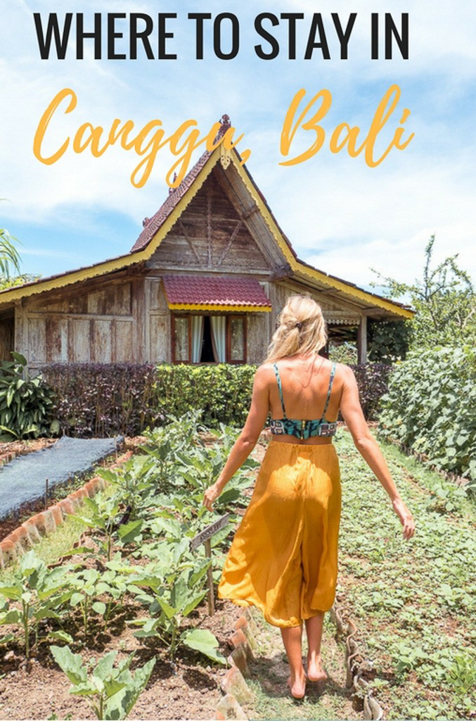 Where to Stay in Canggu