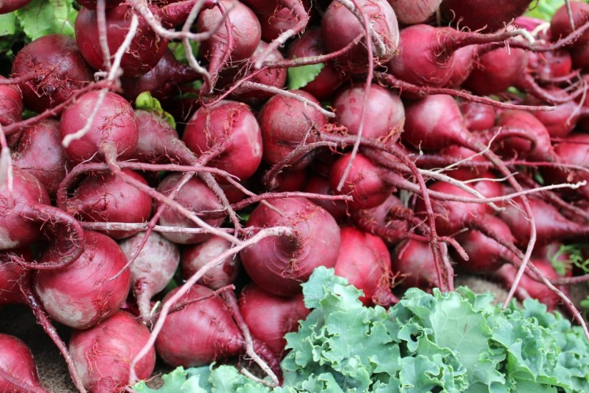 beets-1323616_1920