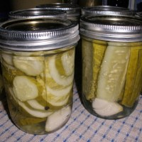 July Can Jam ~ Cucurbits (Old-Fashioned Dill Pickles)