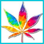 hippie stoners