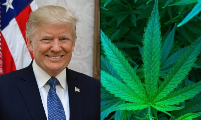 Lawmakers And Celebrities Push Trump To Free Marijuana Prisoners Before Leaving Office