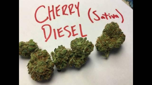 Cherry Diesel Strain Review
