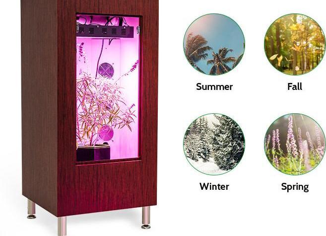 Indoor Grow Box