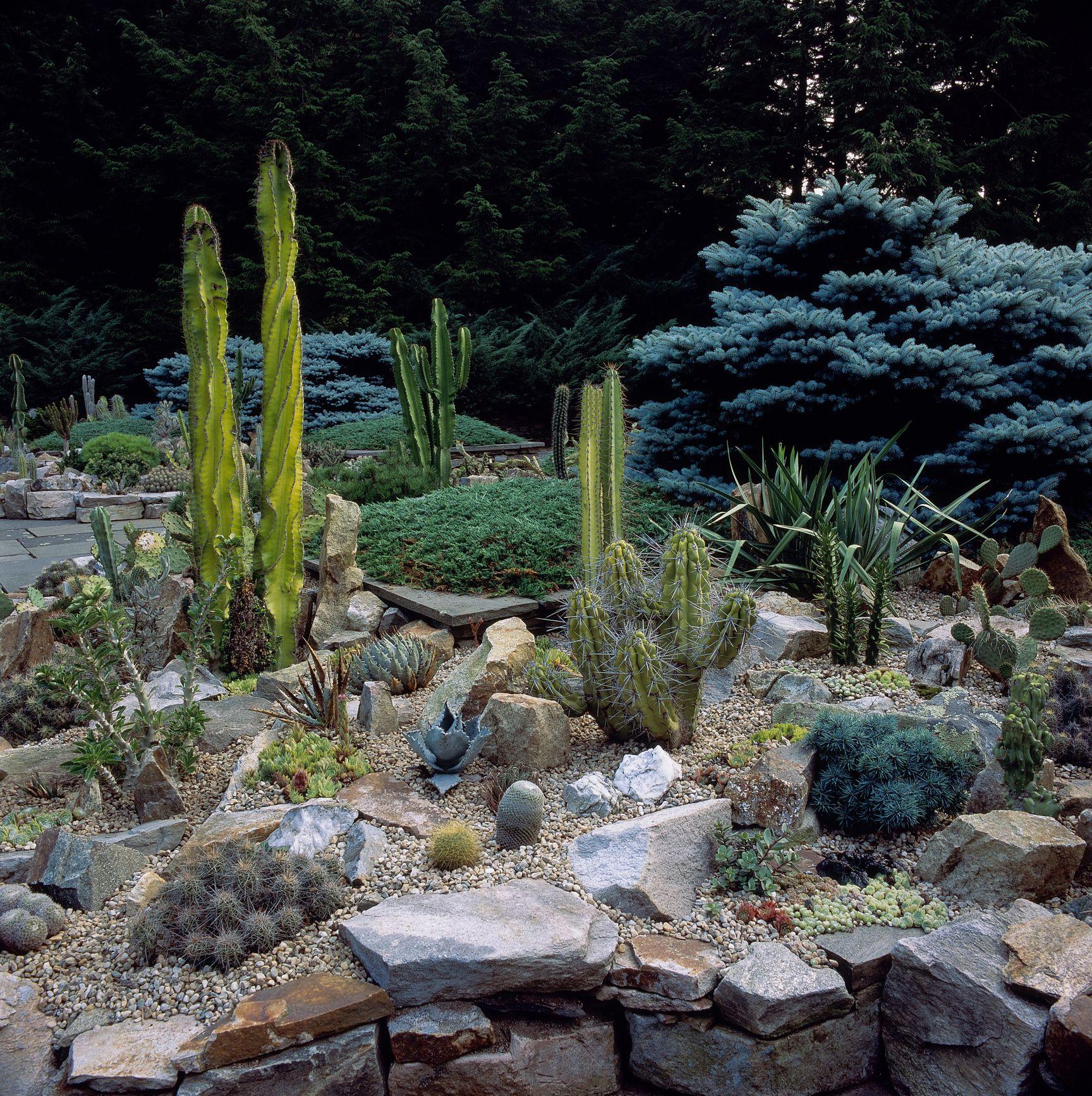6 Best Rock Garden Ideas - Yard Landscaping with Rocks on Backyard Rock Designs id=54117